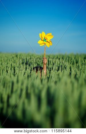 Child Hands Holding Yellow Pinwheel Against Blue Sky And Green Field.