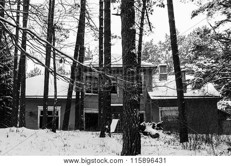 Old House In Forest