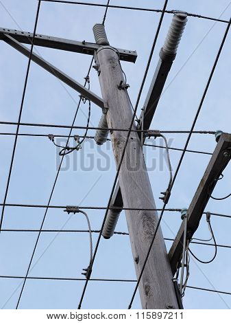 Timber power pole and wires