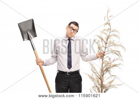 Confused young guy holding a shovel and a dead tree isolated on white background