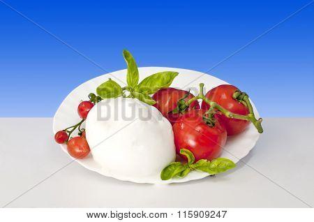 Italian Food Aversana Of Buffalo