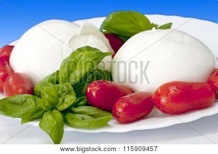Italian Food Mozzarella Of Buffalo With Tomato