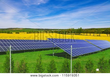 Solar panels on green grass, blue sky