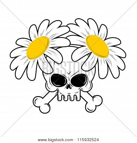 Skull And Flowers. Bones In Camomiles. Death And Lovely White Flowers. Head Skeleton Character Death