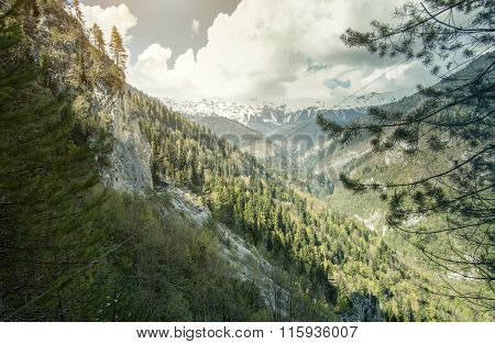 Mountains and Forest Landscape Summer Travel