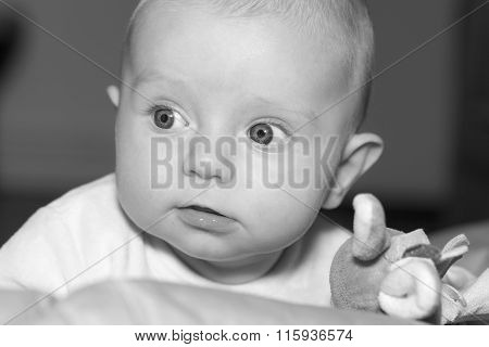 Portrait of  four months old baby