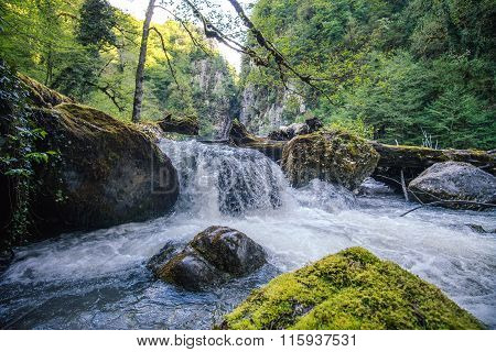 Mountain Waterfall River with deep forest Landscape