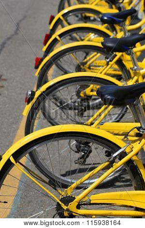 Yellow Bicycles In The Bicycle Rack Of The Urban Bike-sharing Sy