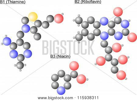 Vitamin B Molecules