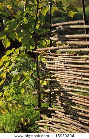 Wicker Fence In The Garden.