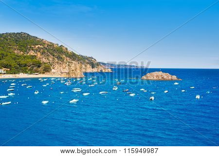 Tossa de Mar Aerial view in Costa Brava of Girona Catalonia spain