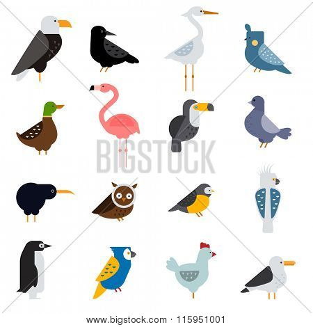 Birds vector set. Birds illustration. Eagle, parrot. Pigeon and toucan. Bird collection. Penguins, flamingos. Crows and peacocks. Black grouse, chicken. Sofa and heron