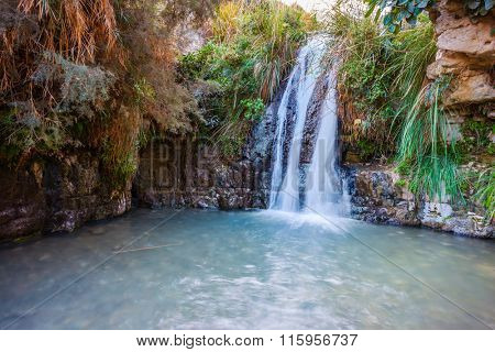 The picturesque waterfall and a small deep lake with emerald water. Walk in the Ein Gedi Nature Reserve