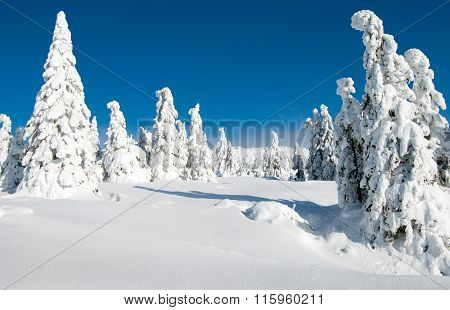 Wintry Landscape Scenery From Krkonose - Giant Mountains