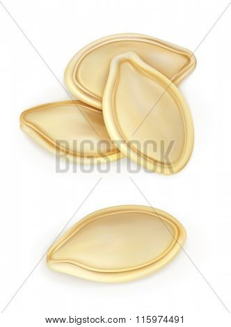 Pumpkin seeds, vector icon