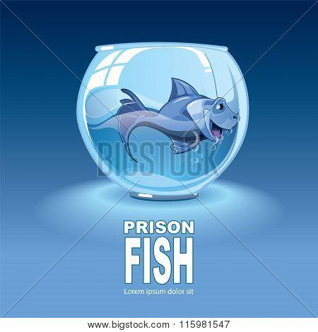 blue small fish in an aquarium