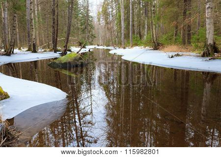 Partially frozen forest river