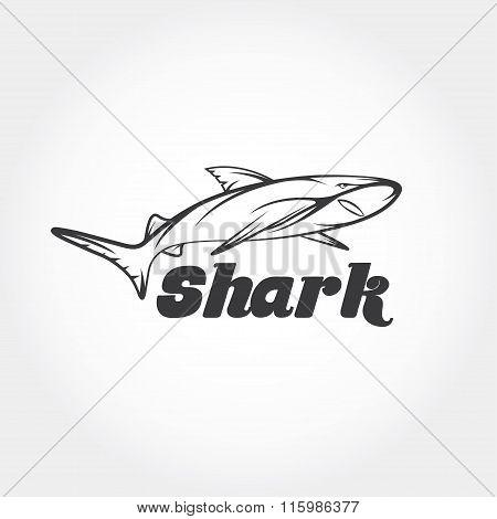 Shark Vector Design Template