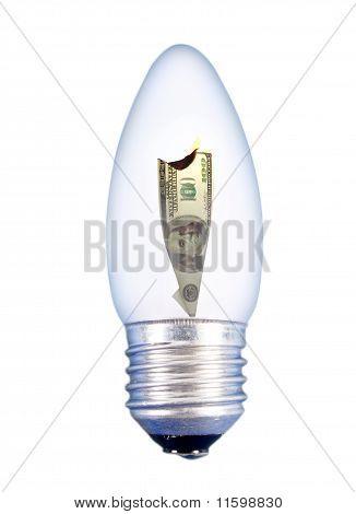 The Burning Dollar In Light Bulb On The White Background