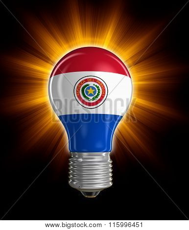 Light bulb with Paraguayan flag.  Image with clipping path