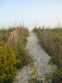path over the dunes