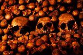 Постер, плакат: Человеческих черепов и других костей