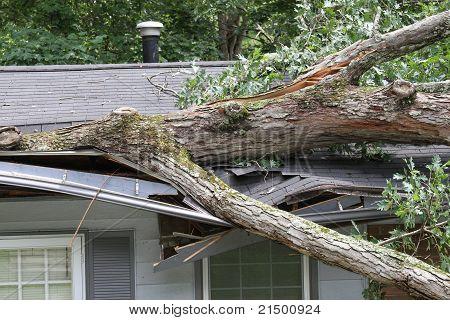 Danos da tempestade