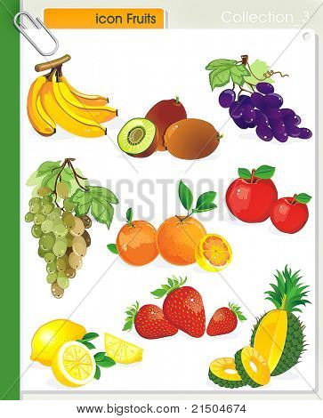 COLLECTION_3 Vector Food Fruits Icons. Abstract web symbols.