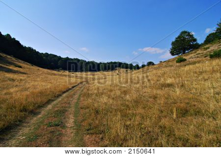 Mountain Uphill Path