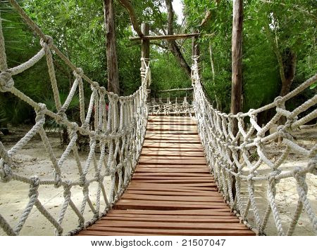 suspension bridge of ropes and woods for a jungle adventure