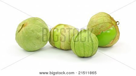 Tomatillos Group Four
