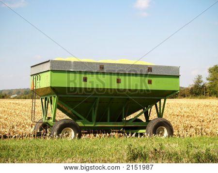 Loaded Grain Wagon