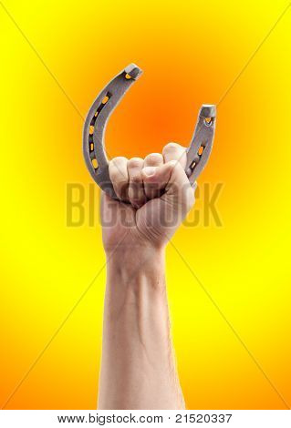 Horseshoe In Hand