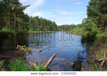 Loch Bordie