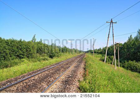 railway amongst green wood