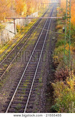 Railway Embankment in Fall