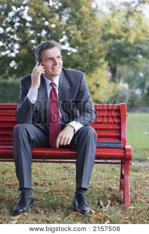 Businessman With Cell Phone