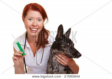 Female Vet With Syringe And Dog