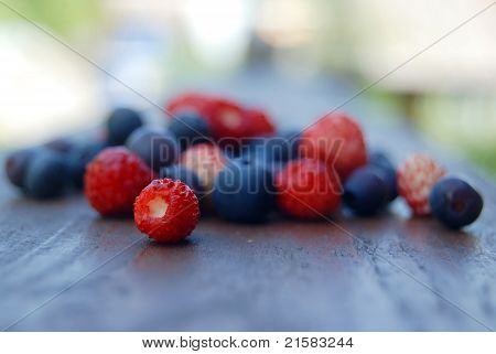 Scattering Of Forest Berries