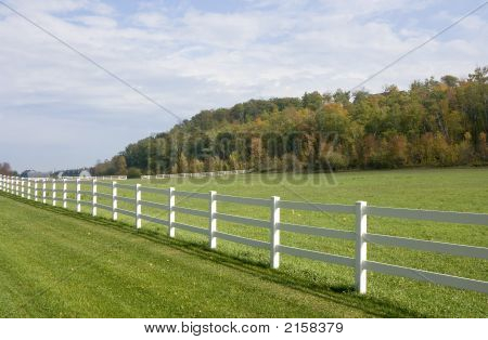 White Wooden Fence