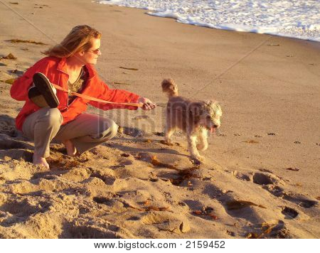 Young Woman Walking Her Dog On The Beach