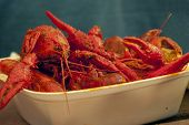 stock photo of crawdads  - Plate of crawdads cooked Louisiana style - JPG