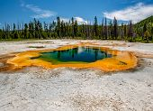 Hot thermal spring Emerald Pool in Yellowstone National Park, Black Sand Basin area, Wyoming, USA poster
