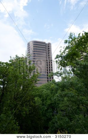 View Of The Top Of A Skyscraper Through Lush Trees
