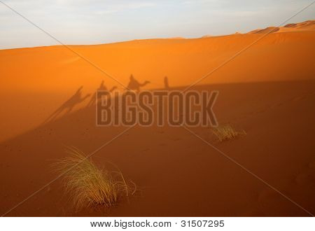 Shadow on a dunes