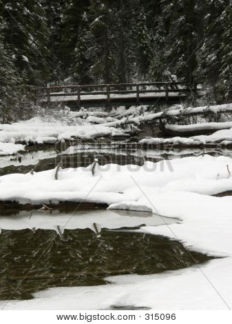 Bridge On Winter Creek