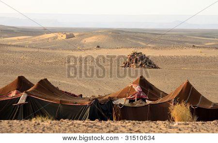 Bedouin desert camp