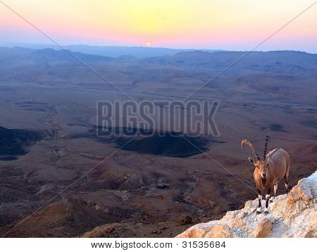 Ramon Crater  Sunrise