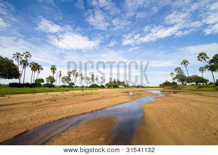 Ruaha Landschaft