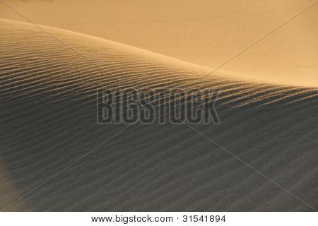 Graceful Sands
